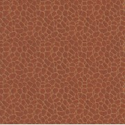 Giraffe (902 18 25) Wallpaper